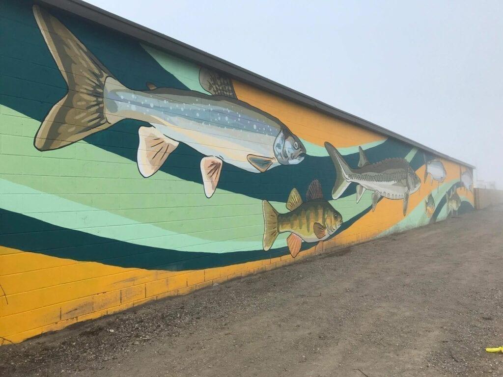 Lake Fish Mural